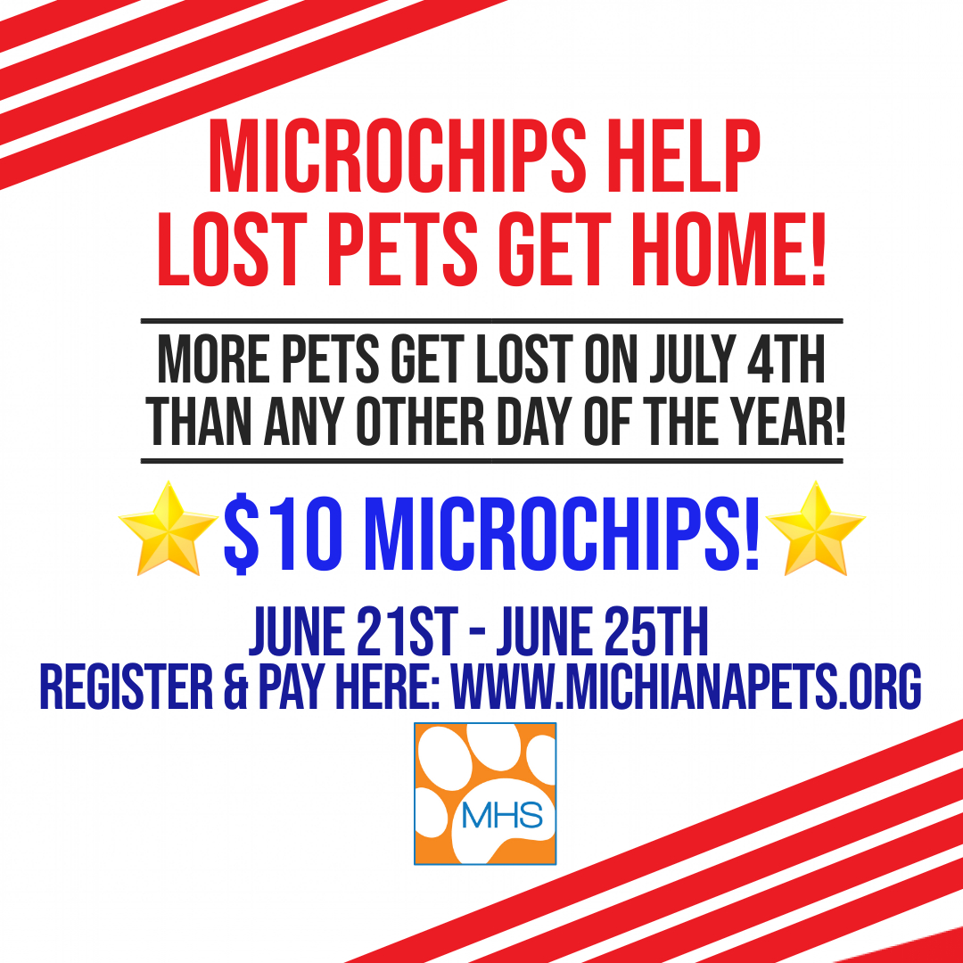 $10 Microchip Special!